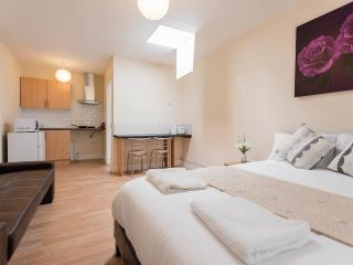 *XMAS & NEW YEAR SALE* GREATER LONDON ZONE STUDIO - Orpington vacation rentals