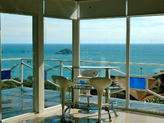 Monkey Magic! Incredible Ocean Views, Private Pool & Jacuzzi - Manuel Antonio National Park vacation rentals