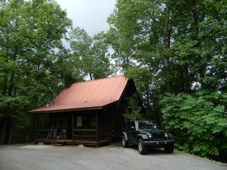 1 bedroom House with A/C in Gatlinburg - Gatlinburg vacation rentals