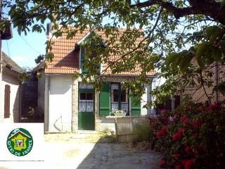gite 2/4 personnes dans un petit village solognot - Yvoy le Marron vacation rentals