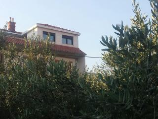 Nice Condo with Internet Access and Garden - Solin vacation rentals