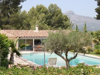 Villa Les ROSIERS - Aubagne vacation rentals