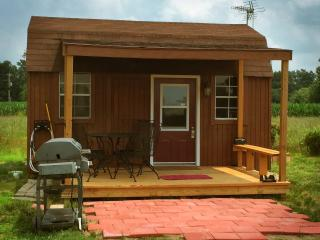 The Scout Cabin - Lyons vacation rentals