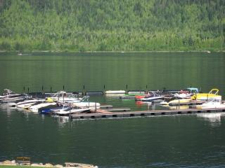 Mara Lake Sicamous BC vacaction lakefront rental - Sicamous vacation rentals