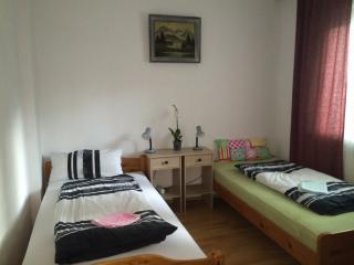 Apartment/Monteurwohnung/Ferienwohnung - Cologne vacation rentals