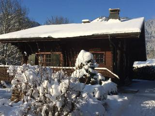 Chalet l'Urogale - Montriond vacation rentals