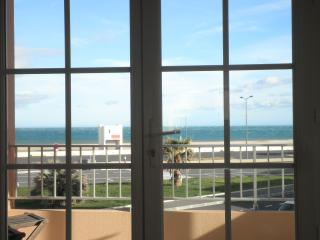 Front de mer 3 *** terrasse , Waterfront 3 *** Ter - Narbonne-Plage vacation rentals