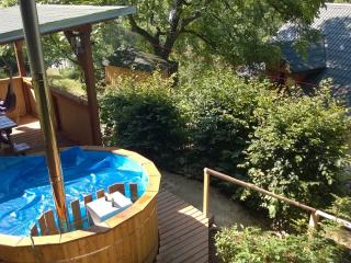 a House in a small village called Rejchartice - Velke Losiny vacation rentals