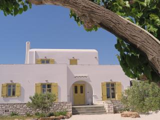 Villa San Dimitrio-House On The Beach - Logaras vacation rentals