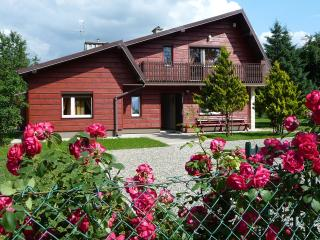 Nice Guest house with Internet Access and Television - Sanok vacation rentals