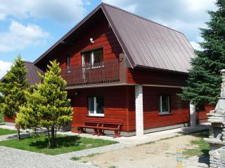 2 bedroom Guest house with Internet Access in Sanok - Sanok vacation rentals