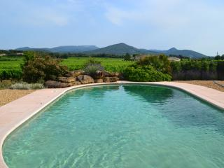 Gorgeous Villa with Internet Access and Linens Provided in Vaison-la-Romaine - Vaison-la-Romaine vacation rentals
