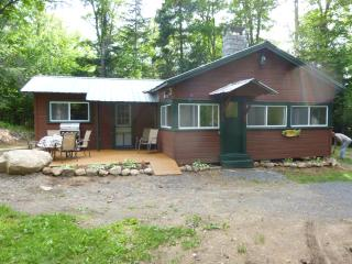 Charming Cottage with Deck and DVD Player - Long Lake vacation rentals
