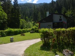 Nice House with Central Heating and Toaster - Demanovska Dolina vacation rentals