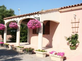 Gite Peyriac Minervois, South France - Peyriac-Minervois vacation rentals