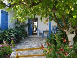 Evia Farm Villa, luxurious relaxing by the sea - Nea Styra vacation rentals