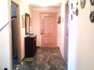 Luxury flat 100m2 fuengirola malaga - Fuengirola vacation rentals