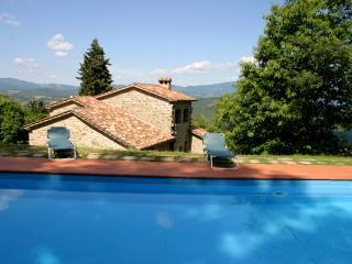 Villa Radicata - Caprese Michelangelo vacation rentals