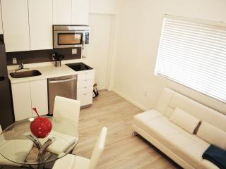 Beautiful 1 bedroom Condo in Miami Beach with Internet Access - Miami Beach vacation rentals