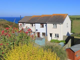Nice House with Internet Access and Satellite Or Cable TV - Porthtowan vacation rentals