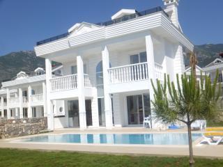 Hisar Park B Villa - Hisaronu vacation rentals