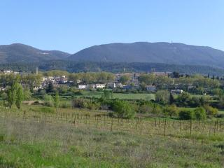 3 bedroom Townhouse with Internet Access in Cucuron - Cucuron vacation rentals