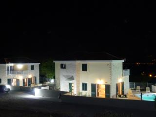 Lovely twin villas with pools for 16 people - Skrip vacation rentals