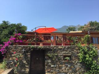 Ambiance cosy entre mer et montagne - Santa-Maria-Poggio vacation rentals