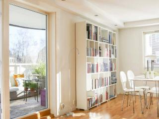 Bright, spacious & central 2BR/1BA - Oslo vacation rentals