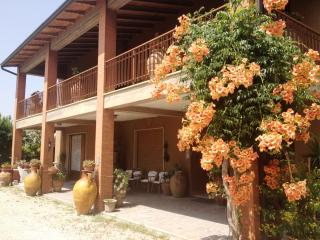 Casa di Checco - AllInclusive - Umbria - Perugia - Torgiano vacation rentals