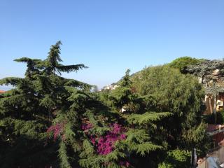 una vetrata sul mare ed immersa nel verde - San Remo vacation rentals