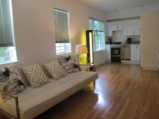 Lincoln Road South Beach - South Miami vacation rentals