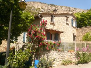 maison en pierre en drôme provençale - La Roche-sur-le-Buis vacation rentals