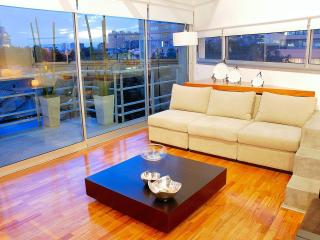Stunning Duplex in Palermo , swimming pool and gym - Buenos Aires vacation rentals