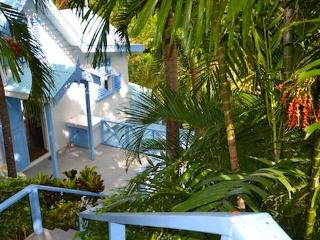 Nice House with Internet Access and Private Outdoor Pool - Belmont vacation rentals