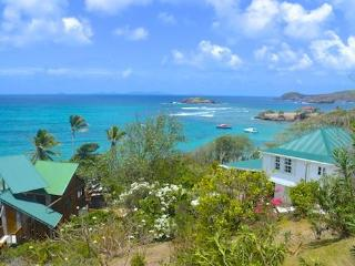 Bright 2 bedroom House in Friendship Bay with A/C - Friendship Bay vacation rentals