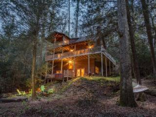 River Spirit - Trophy Trout Stream - Ellijay vacation rentals