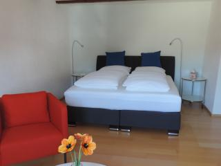 1 bedroom Bed and Breakfast with Internet Access in Lottstetten - Lottstetten vacation rentals