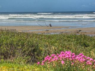 Topley House R528 Waldport Oregon ocean front vacation rental - Waldport vacation rentals