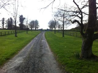 Charming 4 bedroom Farmhouse Barn in Thurles - Thurles vacation rentals