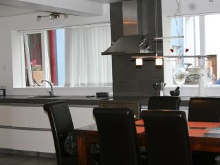 Cosy apartment in 101 - Reykjavik vacation rentals