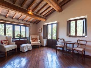5 bedroom villa, private pool and super views - Caprese Michelangelo vacation rentals