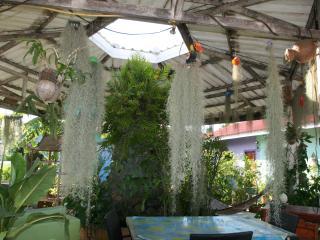 Garden  Resort Pong opposite Jungle Adventures ATV - Chon Buri vacation rentals
