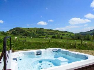 CWMGILLA FARM, detached farmhouse, woodburner, hot tub, WiFi, stunning views, near Knighton, Ref 914604 - Llanbadarn Fynydd vacation rentals