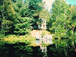 WATERFRONT COTTAGE/GUEST HOUSE N. OTTAWA/GATINEAU - La Peche vacation rentals