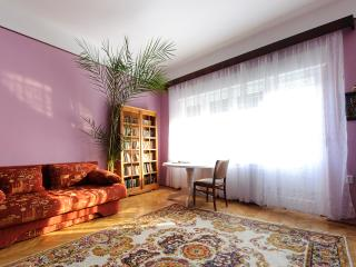 Charming apartment downtown - Brasov vacation rentals