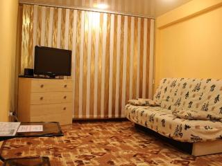 Comfortable 1 bedroom Apartment in Tikhvin - Tikhvin vacation rentals