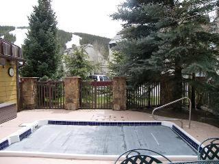 Comfortable Condo with Deck and Internet Access - Copper Mountain vacation rentals