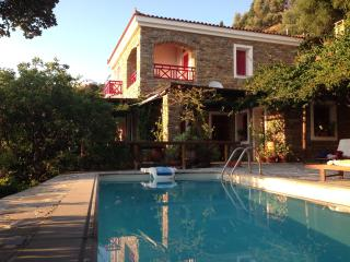 Luxurious villa with private swimming pool&seaview - Batsi vacation rentals