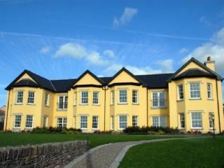 3 Bedroom Luxury Rental Dingle Pennsuila - Dingle vacation rentals